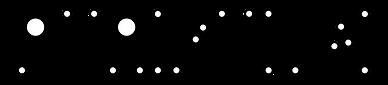 Logo_PuriFungi noir transparent.png