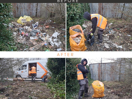 How Choose Genuine Waste Removal Company?