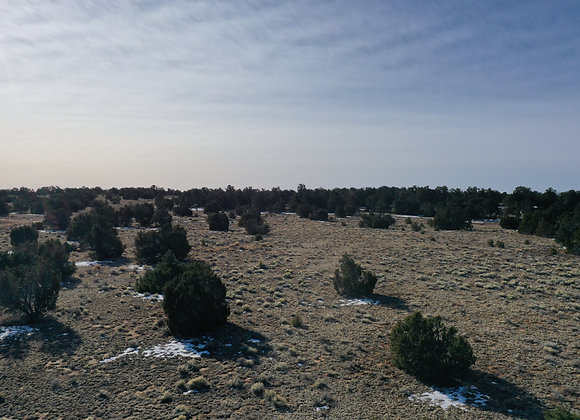 5 Acre Vacant Lot with Limited restrictions Pine Meadows Ranch! R07311