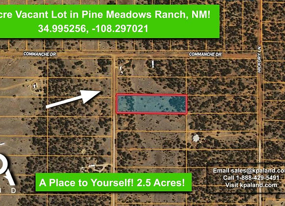 2.5 Acre Vacant Lot for Sale in Pine Meadows Ranch, NM! #2