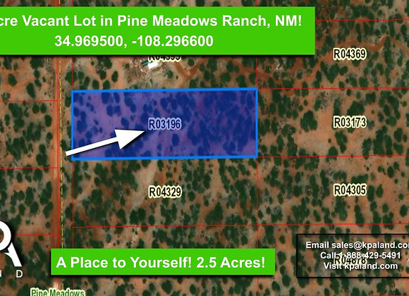 2.5 Acre Vacant Lot for Sale in Pine Meadows Ranch, NM! #3