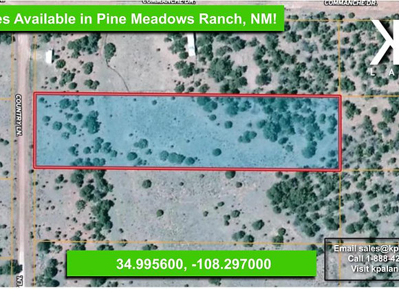 2.5 Acre Vacant Lot for Sale in Pine Meadows Ranch, NM!