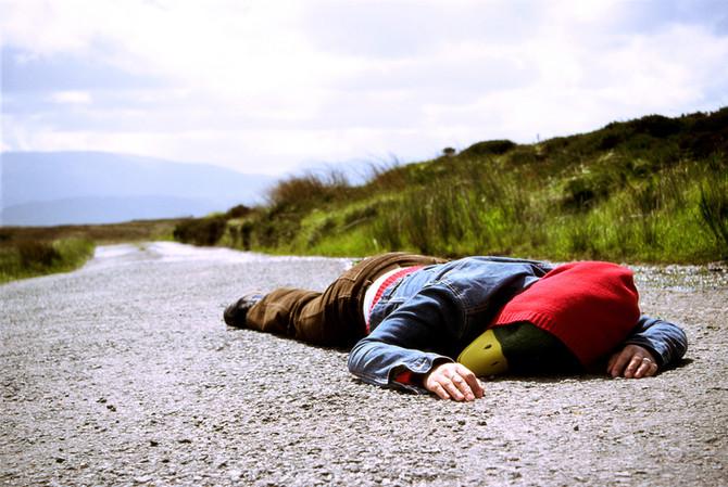 fs3_roadkill_pasminda_donegal.jpg