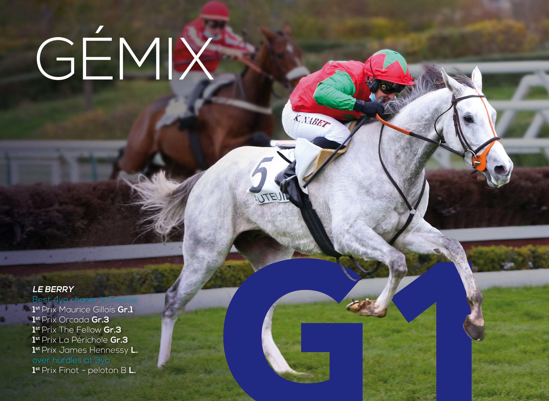 EBN Thoroughbred Stallion Guide p1