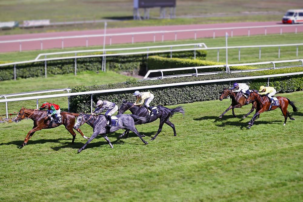 Victoire de Fureur de Vivre dans le Prix Daniel Guestier (Classe 1), à Bordeaux.