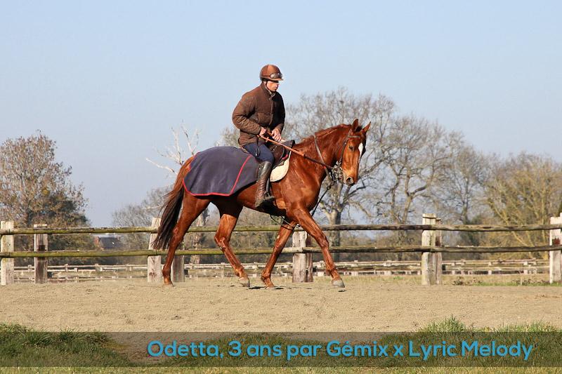Odetta au pré-entraînement