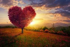red heart tree.jpg