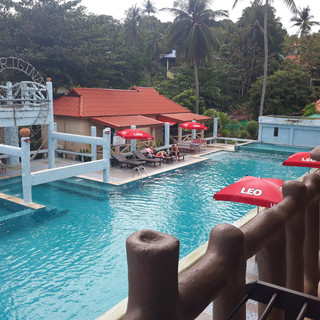 Paradise Triple - Poolside View