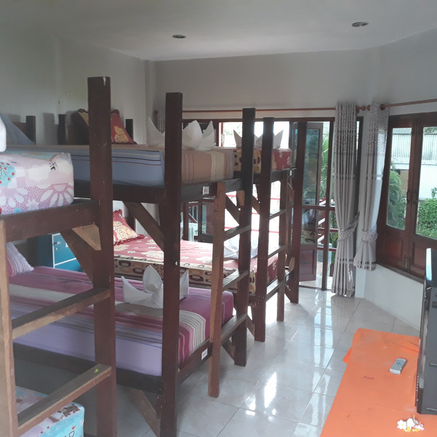 Paradise 6 Bed Dorm