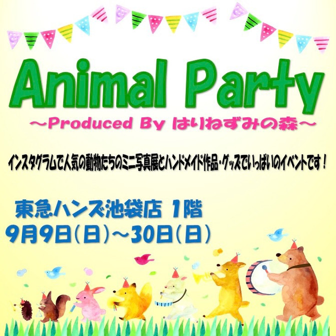 Animal Party!!!