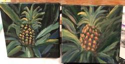 pineapple minis