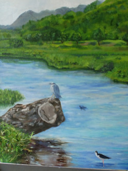 Hamakua Heron2011oil on canvas gallery $