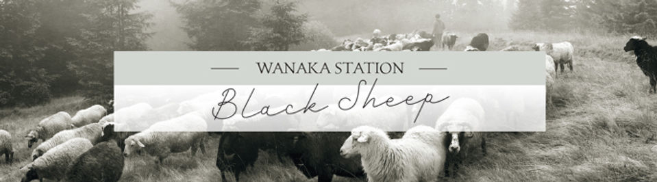 Wanaka Station Black Sheep Wool