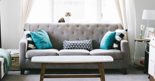 upholstery cleaning charleston sc