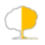 estudar japonês, cursos de japonês, extensive courses, escola de línguas em lisboa, erasmus, my erasmus, erasmus trip, people of bairro, erasmus life lisboa, Universidade de Oxford,   University of Oxford, melhor escola de línguas em Lisboa, best language school in Lisbon, portuguese language course, portuguese for foreigners, cursos   de português para estrangeiros em Lisboa, Portuguese courses for foreigners in Lisbon, inglês para empresas, English for Business, aprender línguas   estrangeiras em Lisboa, to learn foreign languages in Lisbon, bairro alto, largo do rato, diplomas de curos académicos, amoreiras shopping center,