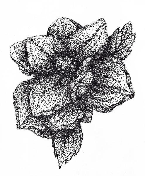 Stippled Flower