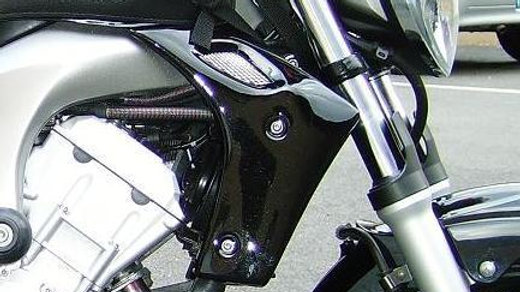 ECOPES BIKE | FZ 6 S2 N (2007/2013)