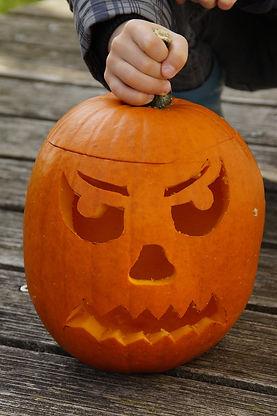 pumpkin-1004980_1920.jpg
