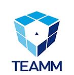 logo teamm.png