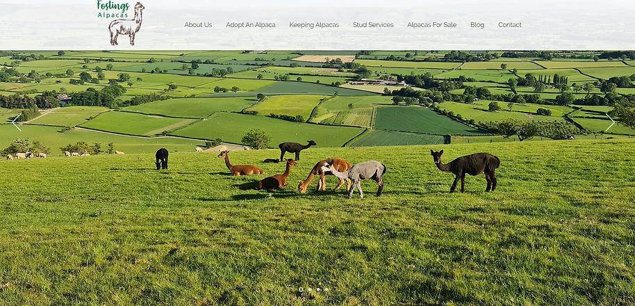 FA Website 1.png