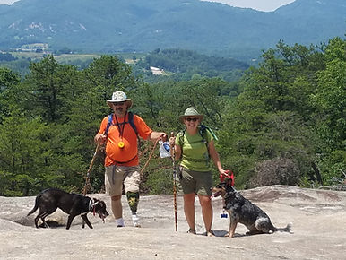 Hiking with rescue Cattle Dog