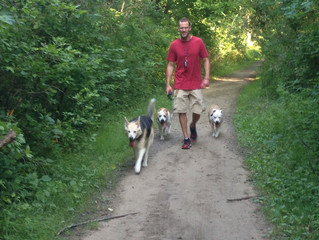 "Off Leash Dogs: They are trained for off leash or they are not. ""Pretty good"" is irresponsible."