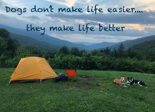 Dogs do not Make Life Easier. They Make Life Better.
