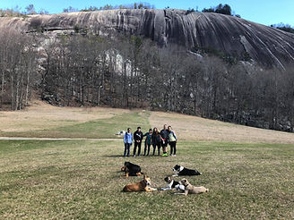 Off leash obedience training with dogs Stone Mountain NC