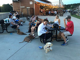 Dogs at the US National Whitewater Center