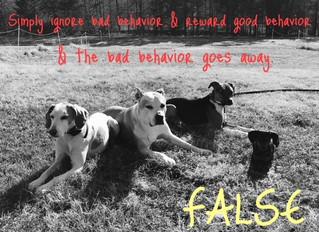 Simply ignoring your dog's bad behaviors & rewarding good behaviors will NOT make the bad be