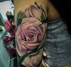 Rose_réaliste_rose_pale_couleur
