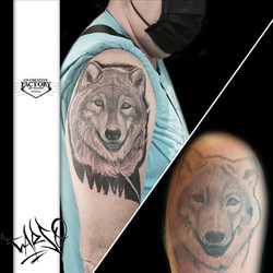 Rattrapage tatouage loup noir et gris réaliste