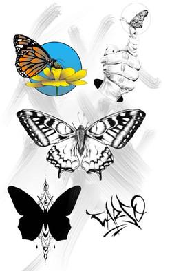 Planche de flash papillons