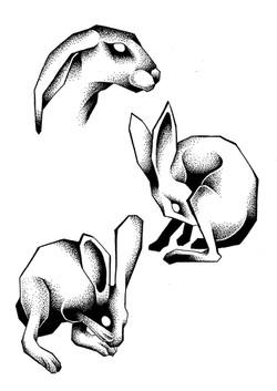 Tattoo flash lapins
