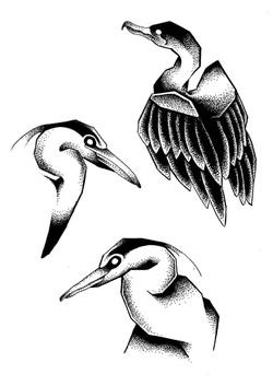 Tattoo flash oiseaux en dot work