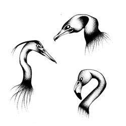 Tattoo flash oiseaux