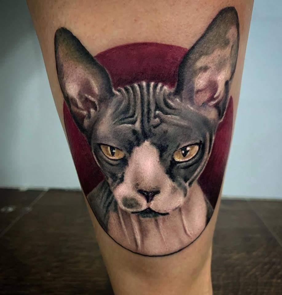 Tatouage chat réaliste