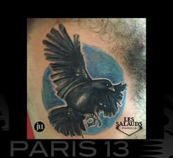 Tatouage Corbeau Aquarelle
