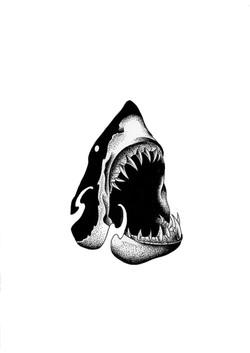 Tattoo Flash requin
