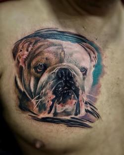 Tatouge chien réaliste