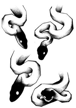 Tattoo flash serpents