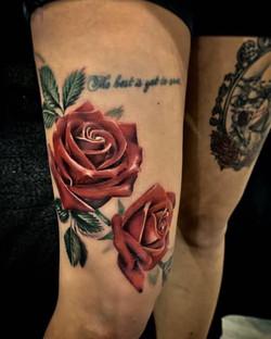 Roses Réalistes couleurs