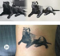 Tatouage chien à partir d'une photo