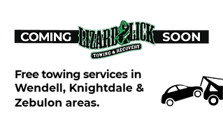 Lizard lick 2-02-01.png