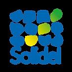 logo solidel _Plan de travail 1.png