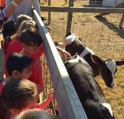 Field Trip to Washington Farms