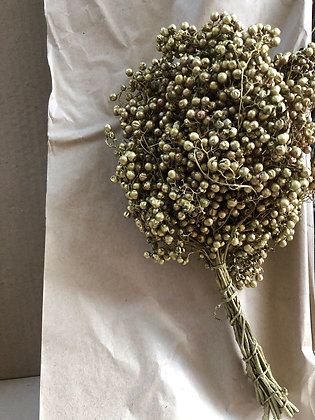 Pepperberry gold
