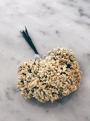 Foam roosjes (vanille)