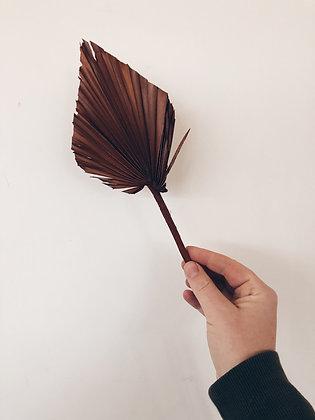 Palm blad: bruin