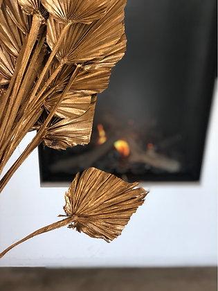 Palm spar goud